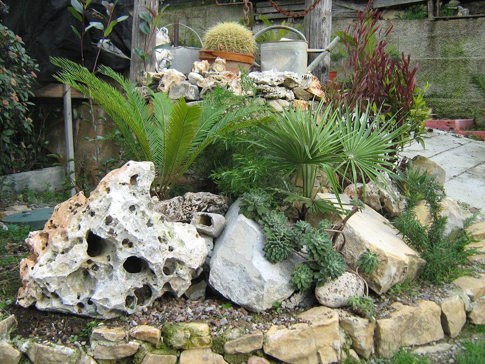 Realizzare un giardino roccioso! 20 esempi bellissimi (VIDEO)