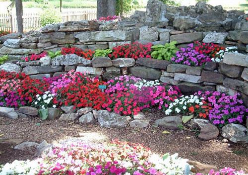 Realizzare un giardino roccioso 20 esempi bellissimi video - Realizzare un giardino ...