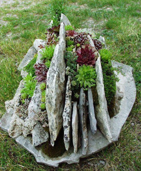 Realizzare un giardino roccioso 20 esempi bellissimi video for Giardino roccioso con piante grasse