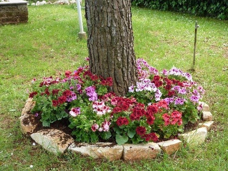 Creare una bella aiuola sotto l 39 albero 20 esempi for Creare aiuole con sassi