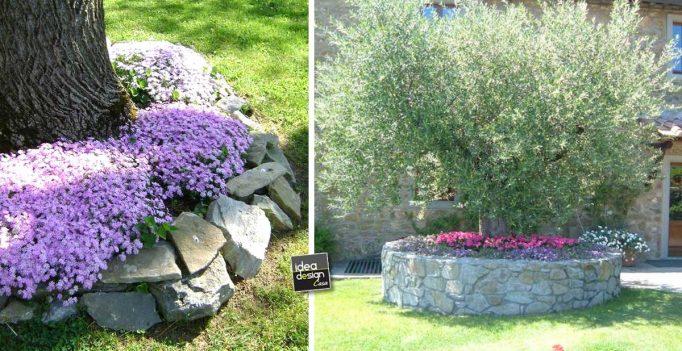 Creare una bella aiuola sotto l 39 albero 20 esempi - Idee aiuole giardino ...