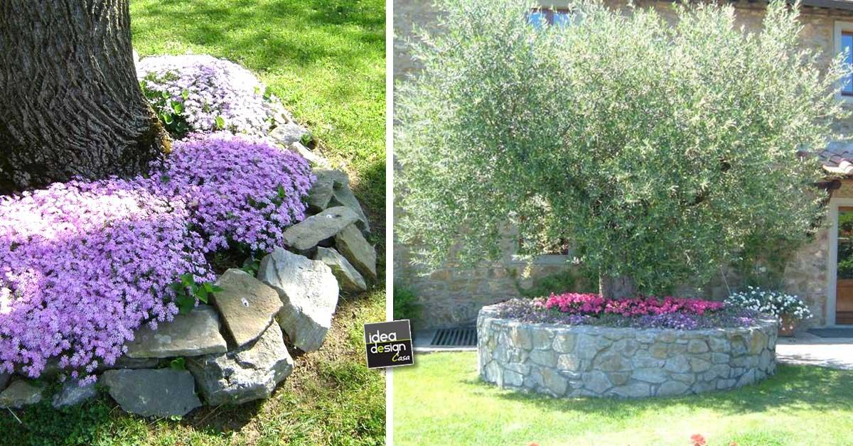 Creare una bella aiuola sotto l 39 albero 20 esempi - Idee per aiuole giardino ...
