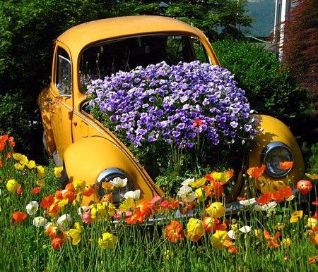 vecchia macchina nel giardino