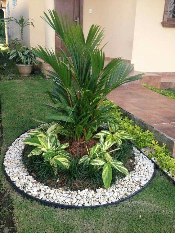 cmo decorar el jardn con palmeras idea 1 - Como Decorar Un Jardin