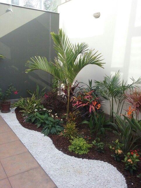 Giardino con le palme 20 idee per dare un tocco tropicale for Jardines pequenos simples