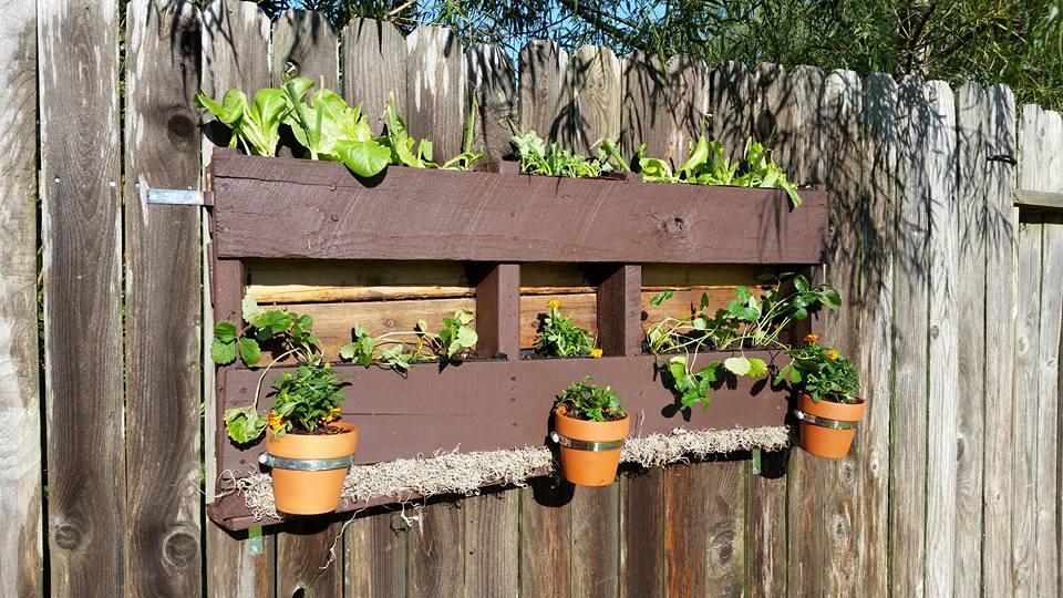 bricolaje jardn jardineras