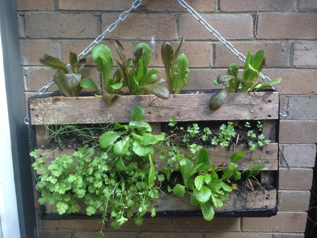 Fioriere da giardino fai da te realizzati con bancali 20 for Jardin colgante palet