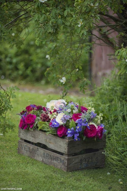 Una piccola fioriera in una cassetta di legno 20 idee a for Design frontale della piccola casa