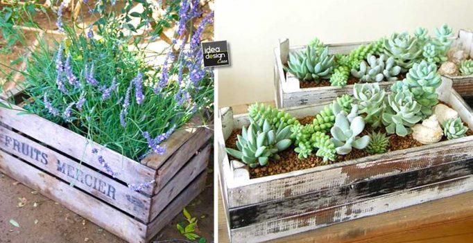 Una piccola fioriera in una cassetta di legno 20 idee a for Fioriera legno fai da te