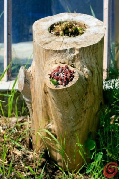 creare una fioriera da un tronco d'albero abbattuto! 20 idee per ... - Idee Per Decorare Un Giardino