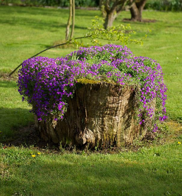 Creare una fioriera da un tronco d'albero abbattuto