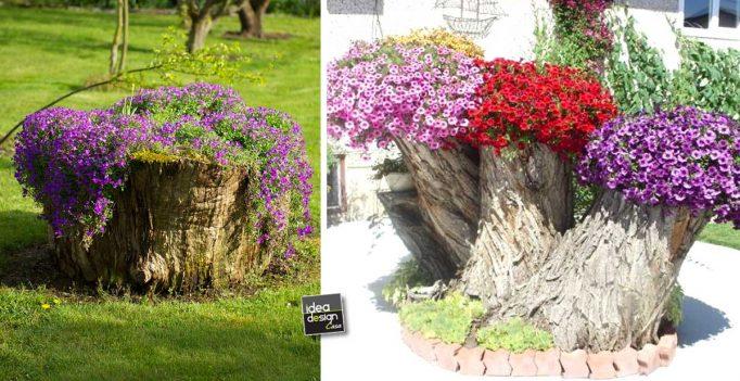 Creare una fioriera da un tronco d 39 albero abbattuto 20 for Tronco albero arredamento