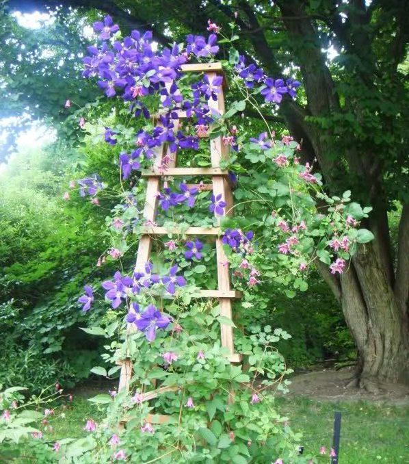 decorar el jardn con una vieja escalera u idea