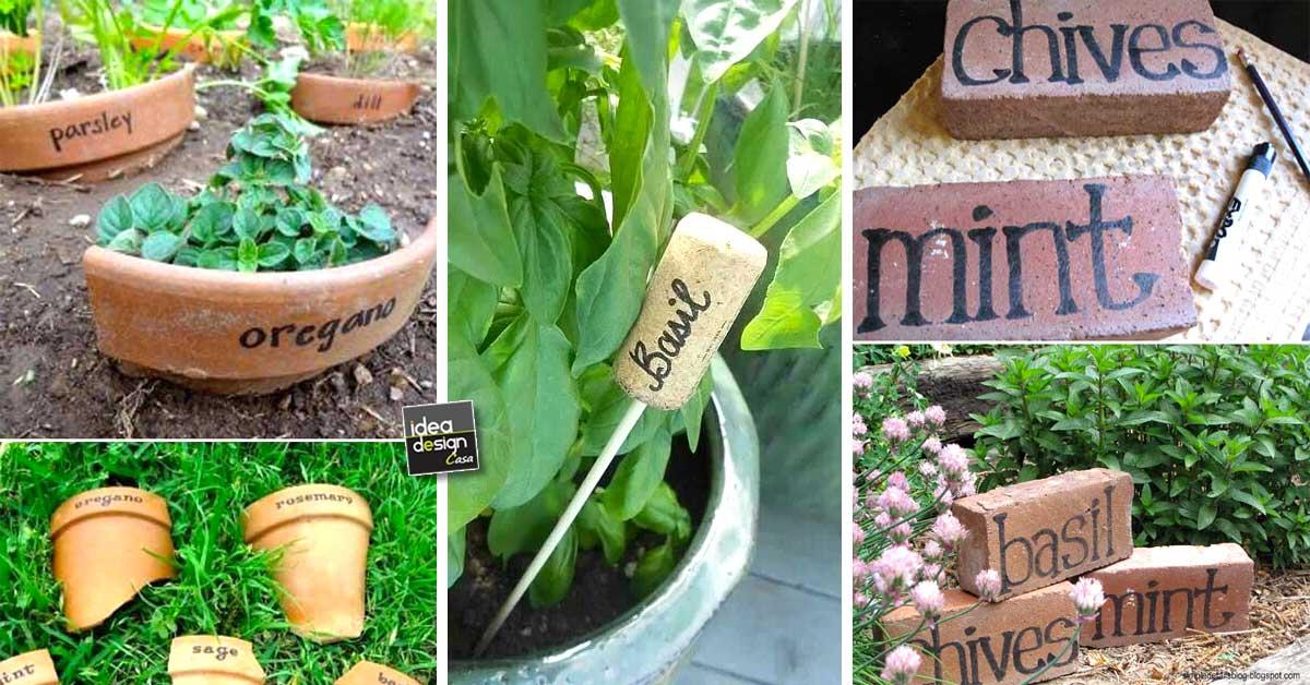 Etichettare le piante in giardino 20 idee creative - Piante in giardino ...