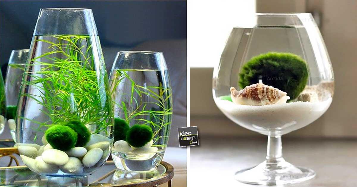 ... acquatica in un contenitore di vetro! 20 idee... Lasciatevi ispirare