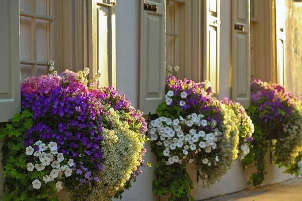 Decorare il balcone con i fiori