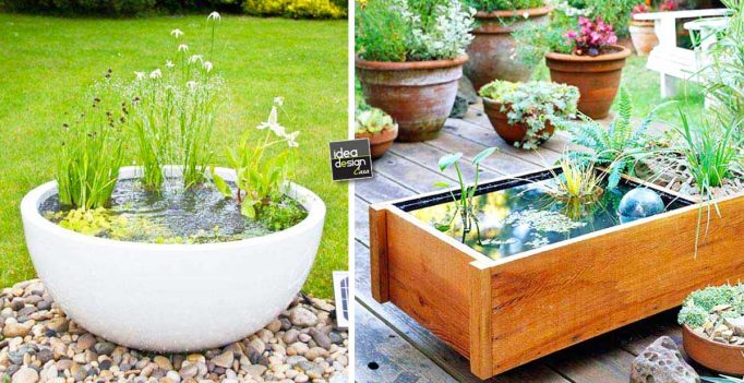 Piccolo laghetto in un vaso per decorare il giardino 20 for Idee per il giardino piccolo