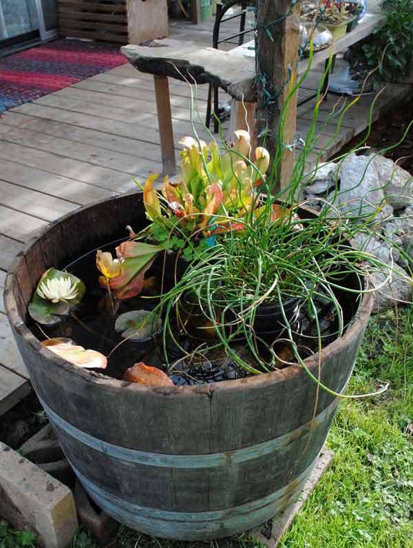 spesso Piccolo laghetto in un vaso per decorare il giardino! 20 idee + VIDEO EJ79