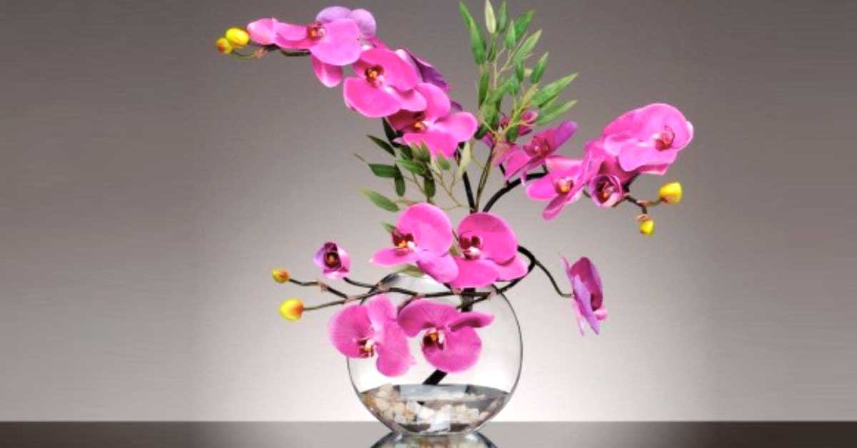 Come mantenere freschi i fiori