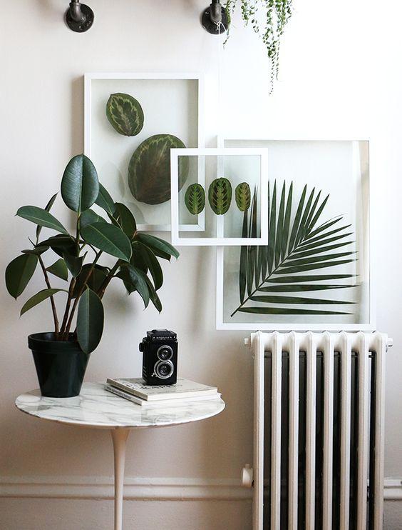 Realizzare un quadro con foglie