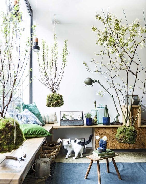 Decorazioni green originali per decorare casa ecco 20 - Idee decorazioni casa ...