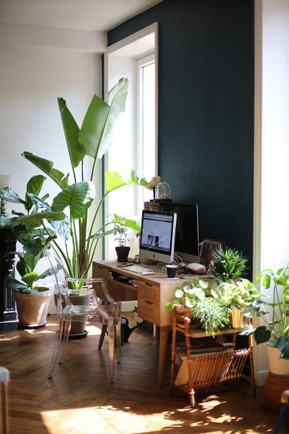 Decorazioni green originali per decorare casa ecco 20 - Idee per decorare casa ...