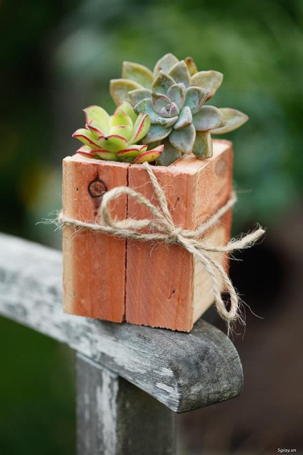 Centrotavola in legno fai da te 15 idee per un tocco - Casa in legno fai da te ...