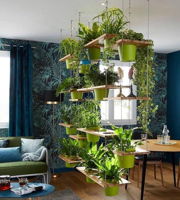 Piante e fiori per decorare casa