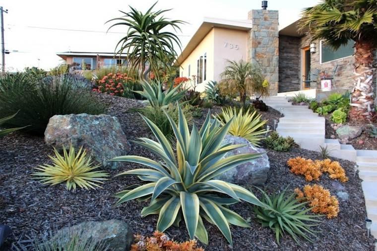 Decorare il giardino con cactus e piante grasse
