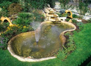 Costruire un laghetto per le tartarughe nel tuo giardino for Vasca pesci esterno