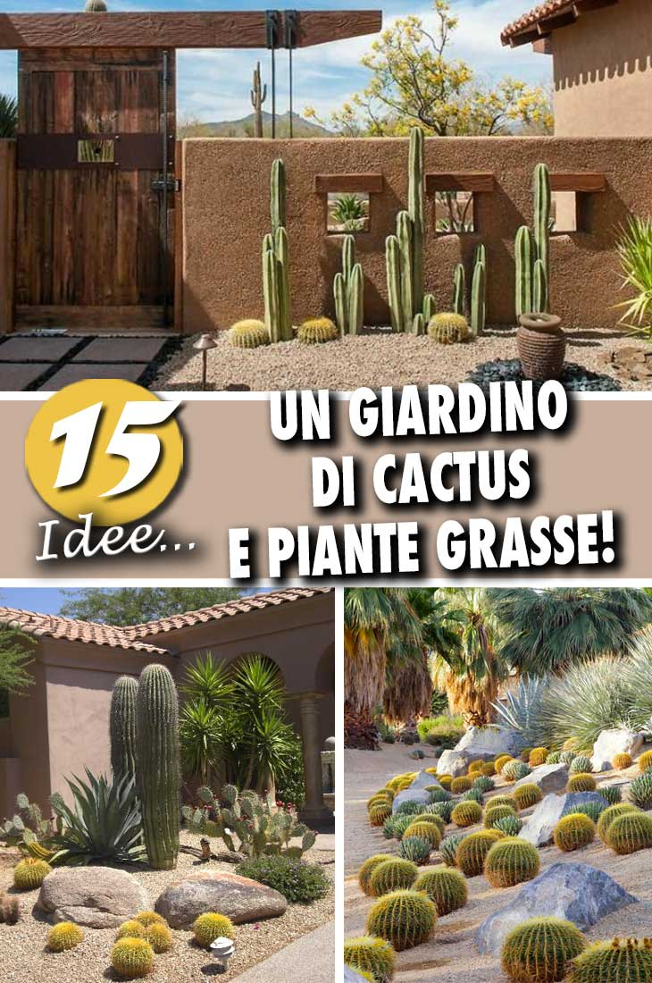 Piante Grasse Da Giardino decorare il giardino con cactus e piante grasse! 15 idee a