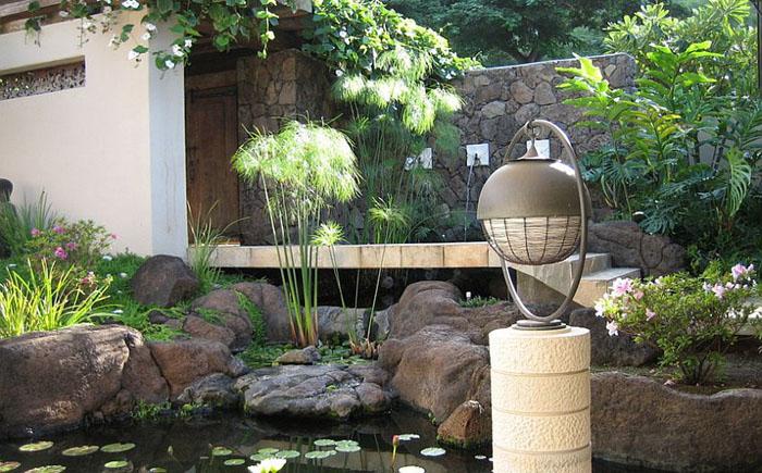Piante esotiche in giardino