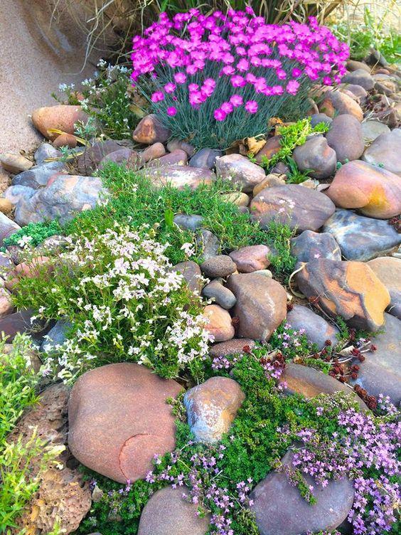 Un Aiuola da giardino con le pietre