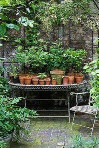 arredamento-del-giardino-allinglese