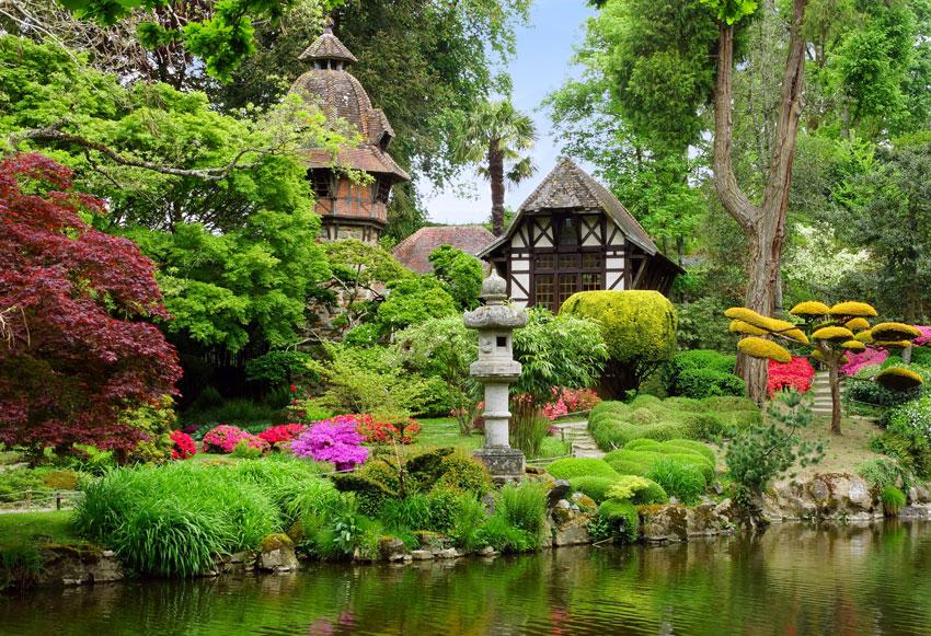 decorazione esterna tropicale, vegetazione colorata.