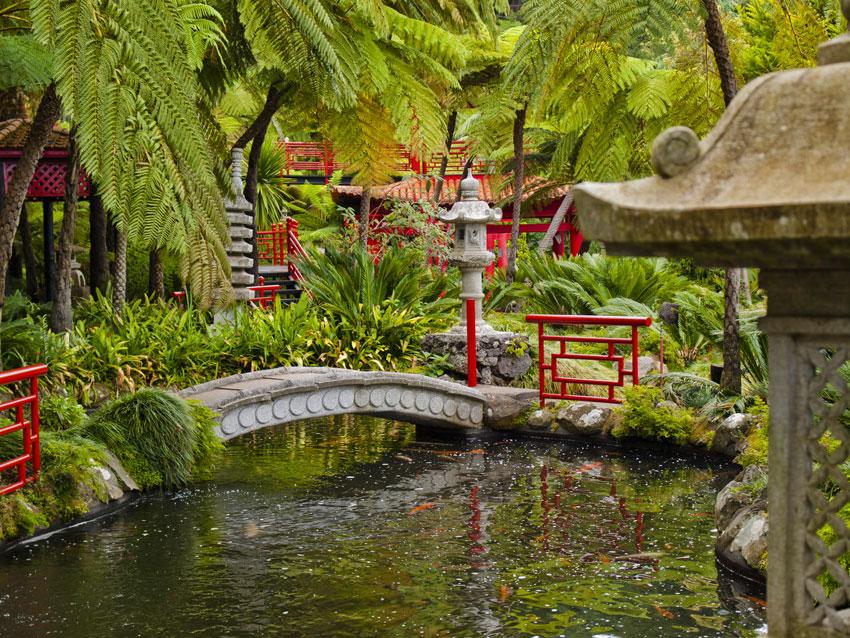 giardino zen tropicale.