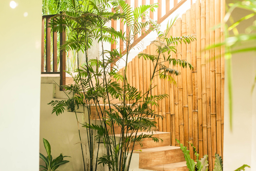 Giardino zen da interno con pianta e canne di bamboo decorative.