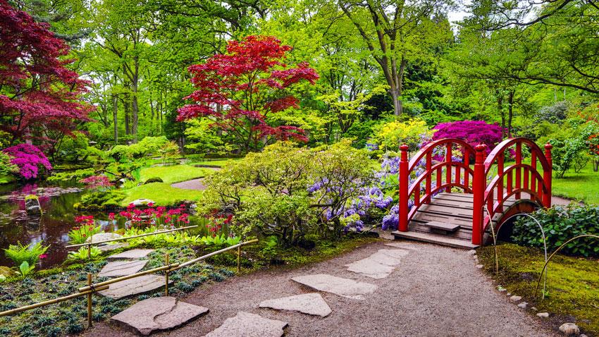 giardino zen con passerella, fiori colorate.