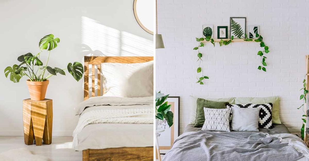 Decorare la camera da letto con le piante.