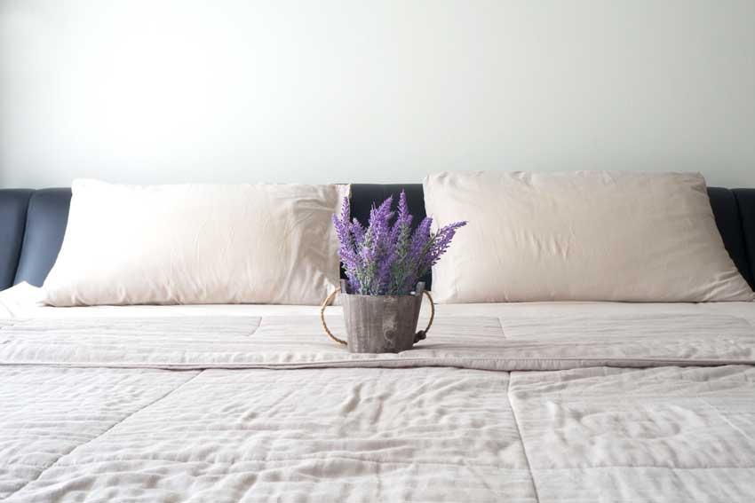 Dormire meglio con le piante