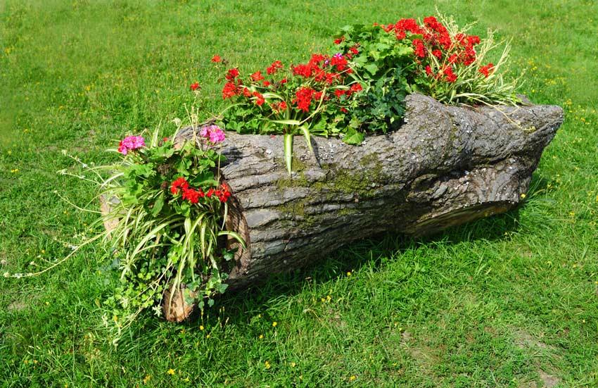 fioriera tronco