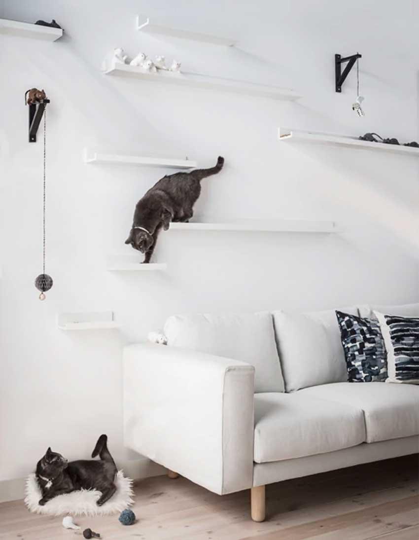 Mensole Mosslanda di ikea usate per realizzare una parete palestra per gatti