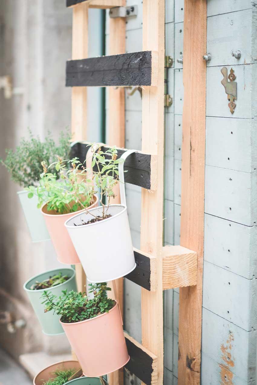 Coltivare In Casa Piante Aromatiche erbe aromatiche: un angolo aromatico in casa tutto l'anno