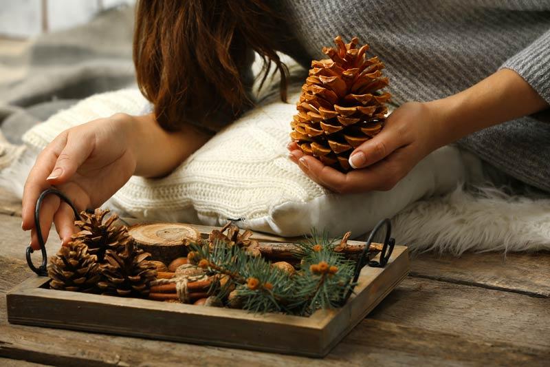 Composizione natalizia fai da te con le pigne.