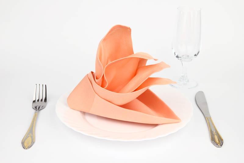Piegare i tovaglioli in modo elegante per decorare la tavola durante una cena.