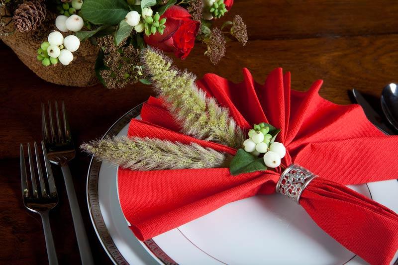Bellissimi esempi per piegare i tovaglioli natalizi.