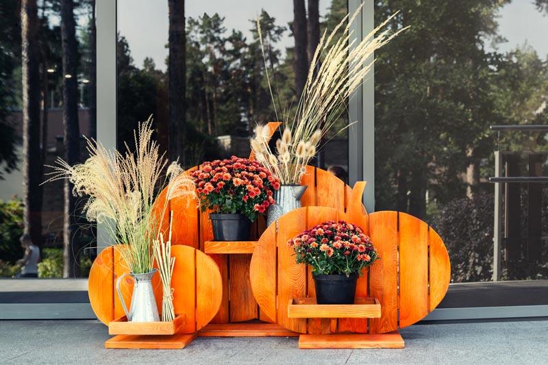 Decorazione di Halloween con pallet e vasi di fiori autunnali.