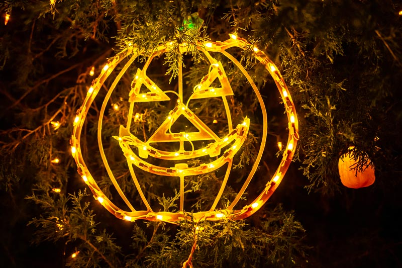 Zucca luminosa per decorare il giardino a Halloween.
