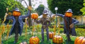 decorazioni Halloween giardino.