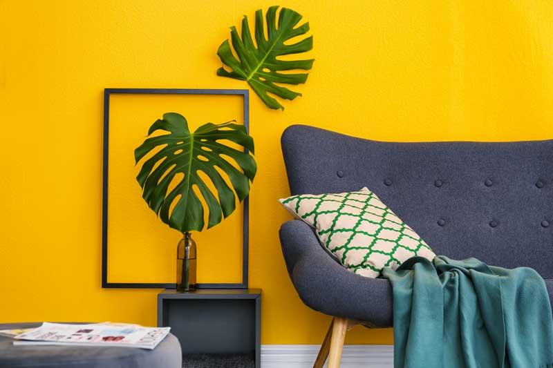 Parete gialla con pianta verde e divano blu.